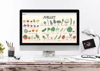 Illustration | Calendrier Légumes - Site PlantezChezNous.com